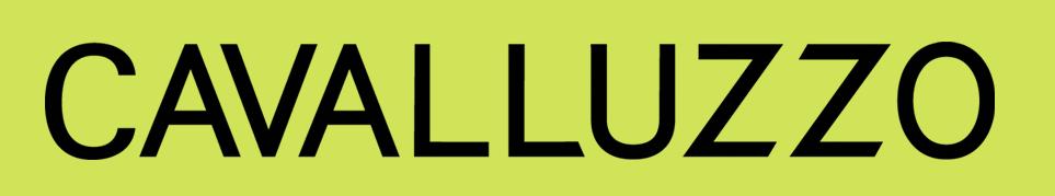 Cavalluzzo Logo.