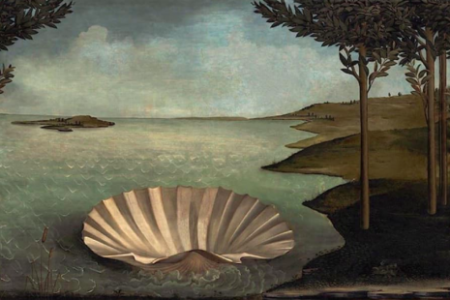 Aphrodite's clam shell, abandoned and empty.