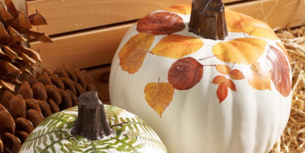 Two decorated white pumpkins.